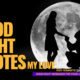 Good-Night-My-Love-Quotes