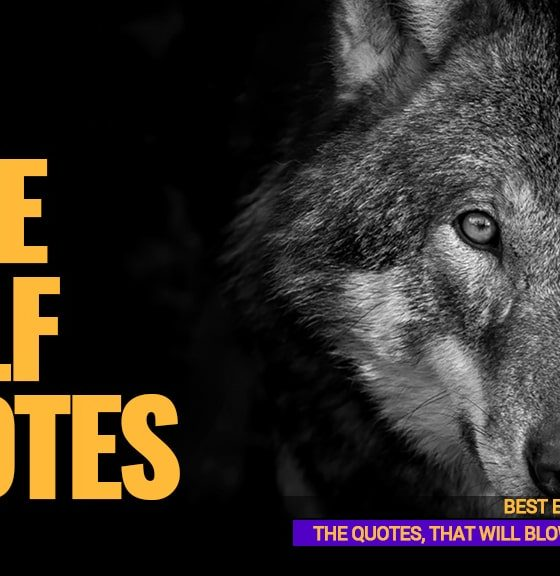 Lone-Wolf-Quotes