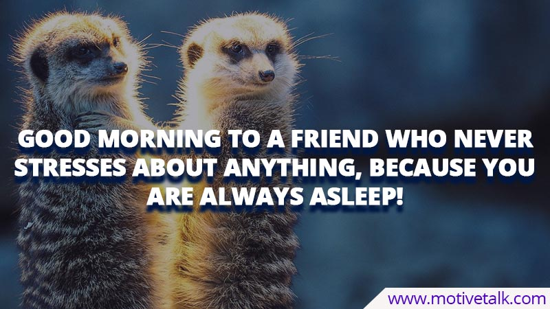 Funny-Good-Morning-Quotes-For-Friends
